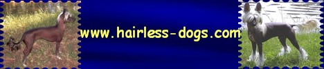 Logo Hairless-Dogs.com